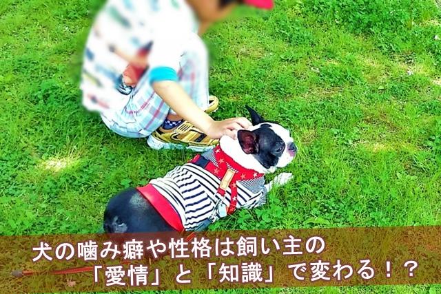 犬の噛み癖や性格は飼い主の「愛情」と「知識」で変わる!?