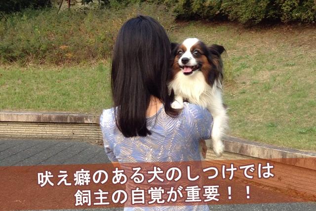 吠え癖のある犬のしつけでは飼主の自覚が重要!!